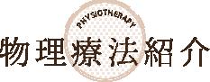 物理療法紹介